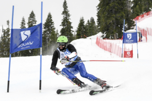 Parallel slalom from 28.01.2019
